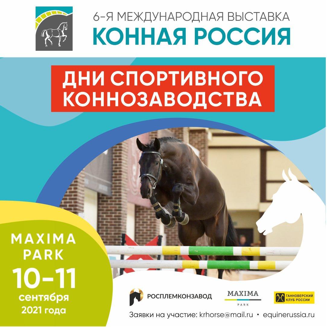 Дни спортивного коннозаводства пройдут на КОННОЙ РОССИИ в сентябре!