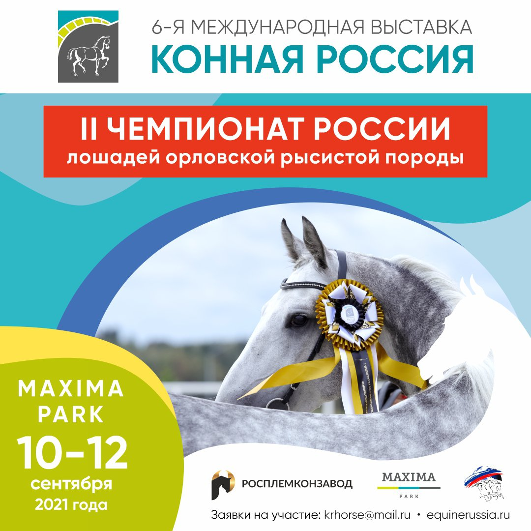 II Чемпионат России лошадей орловской рысистой породы