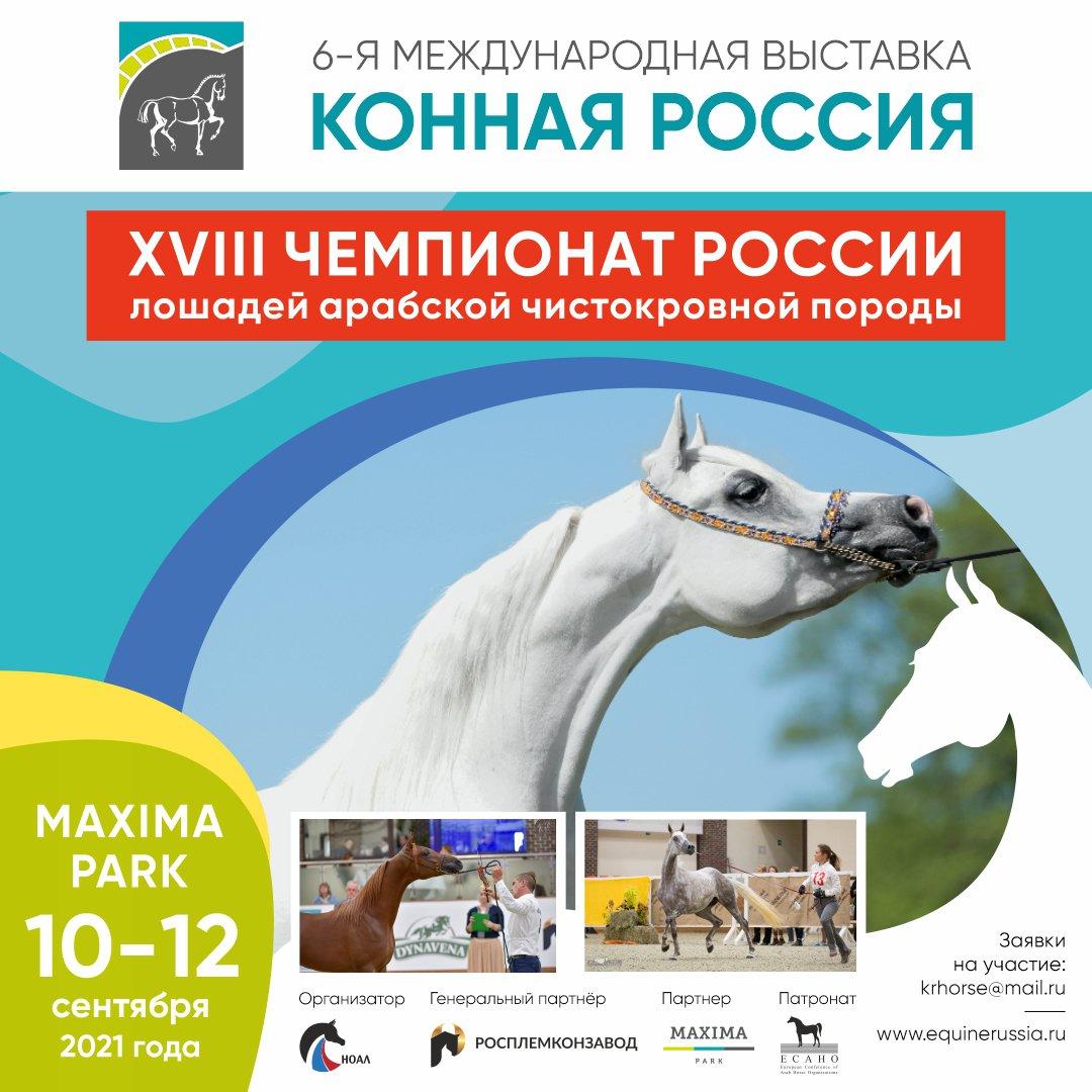 XVIII Чемпионат России ЛОШАДЕЙ АРАБСКОЙ ЧИСТОКРОВНОЙ ПОРОДЫ